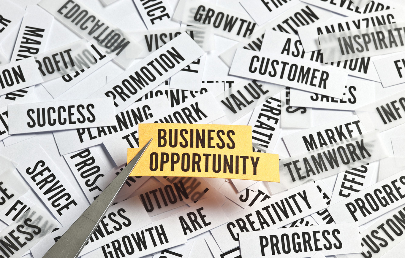 How to Bank on a Good Business Opportunity