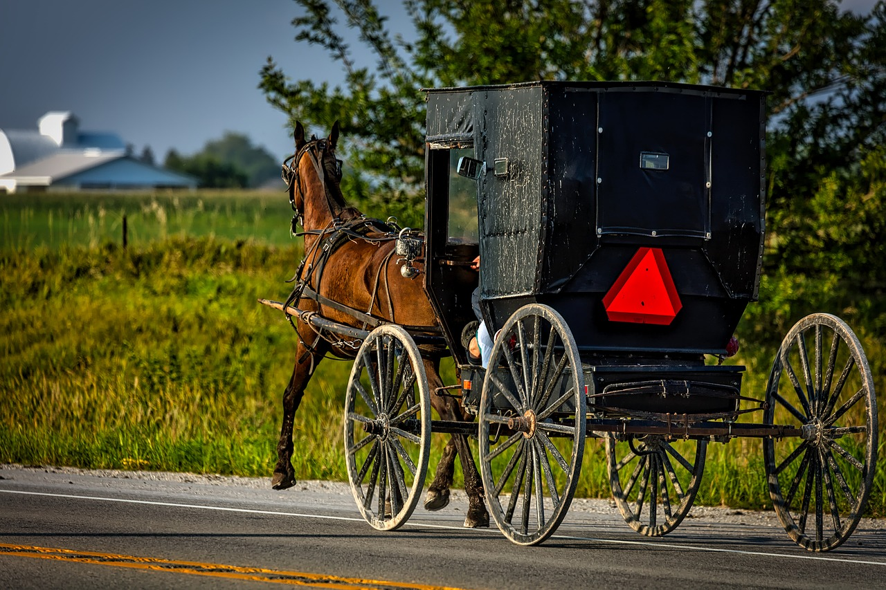 "Power Outage Traced to Amish ""Evangelistic Crusade"""