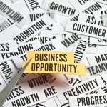 small business opportunities from home